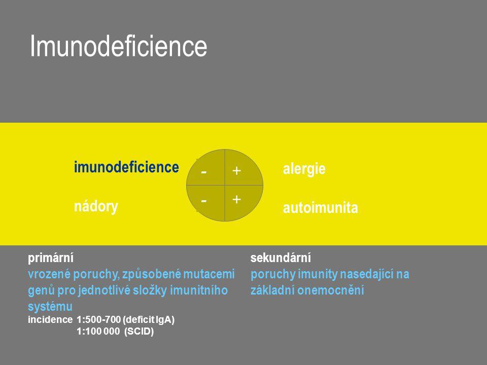 Imunodeficience + + - - imunodeficience nádory alergie autoimunita primární vrozené poruchy, způsobené mutacemi genů pro jednotlivé složky imunitního