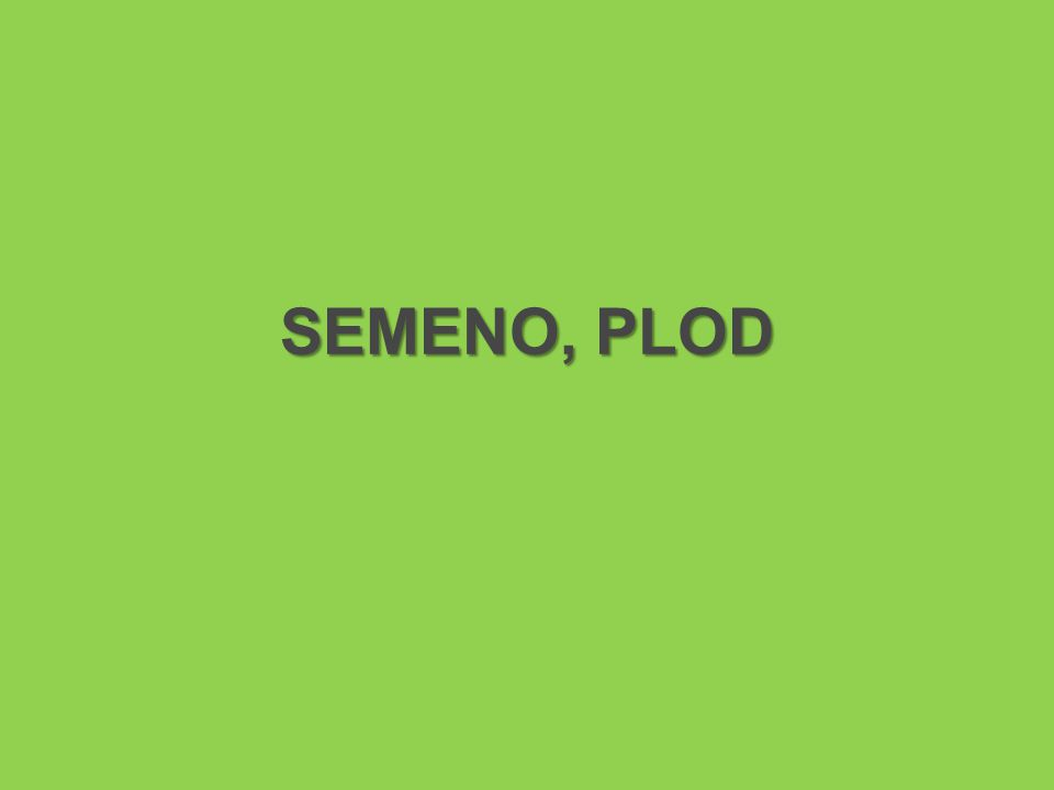 SEMENO, PLOD