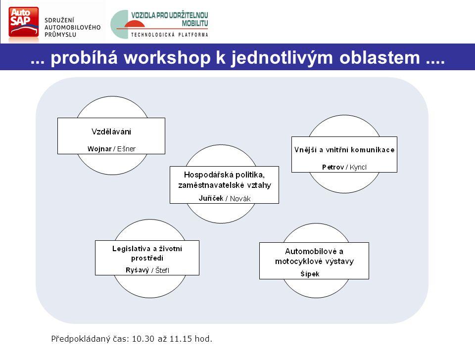 ... probíhá workshop k jednotlivým oblastem.... Předpokládaný čas: 10.30 až 11.15 hod.