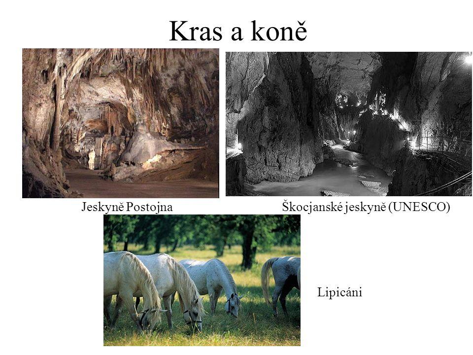 Kras a koně Jeskyně Postojna Lipicáni Škocjanské jeskyně (UNESCO)