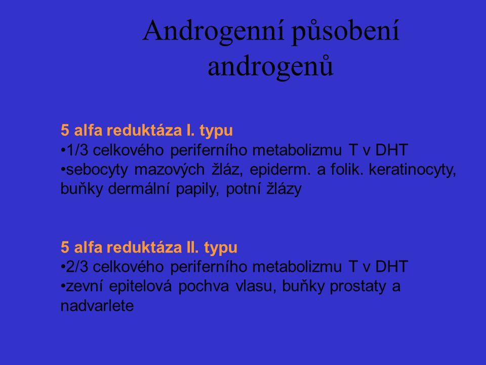 Androgenní působení androgenů 5 alfa reduktáza I. typu 1/3 celkového periferního metabolizmu T v DHT sebocyty mazových žláz, epiderm. a folik. keratin