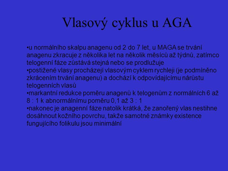 Vlasový cyklus u AGA u normálního skalpu anagenu od 2 do 7 let, u MAGA se trvání anagenu zkracuje z několika let na několik měsíců až týdnů, zatímco t