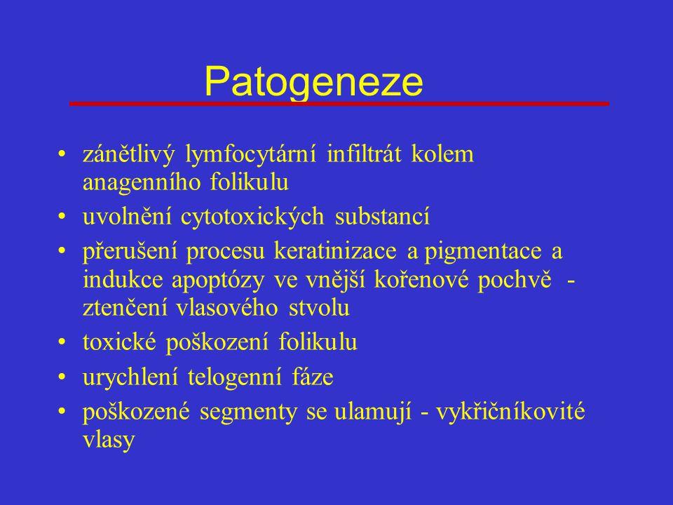 Patogeneze zánětlivý lymfocytární infiltrát kolem anagenního folikulu uvolnění cytotoxických substancí přerušení procesu keratinizace a pigmentace a indukce apoptózy ve vnější kořenové pochvě - ztenčení vlasového stvolu toxické poškození folikulu urychlení telogenní fáze poškozené segmenty se ulamují - vykřičníkovité vlasy