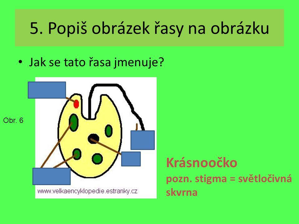 Světločivná skvrna 5. Popiš obrázek řasy na obrázku Jak se tato řasa jmenuje? Krásnoočko pozn. stigma = světločivná skvrna Obr. 6