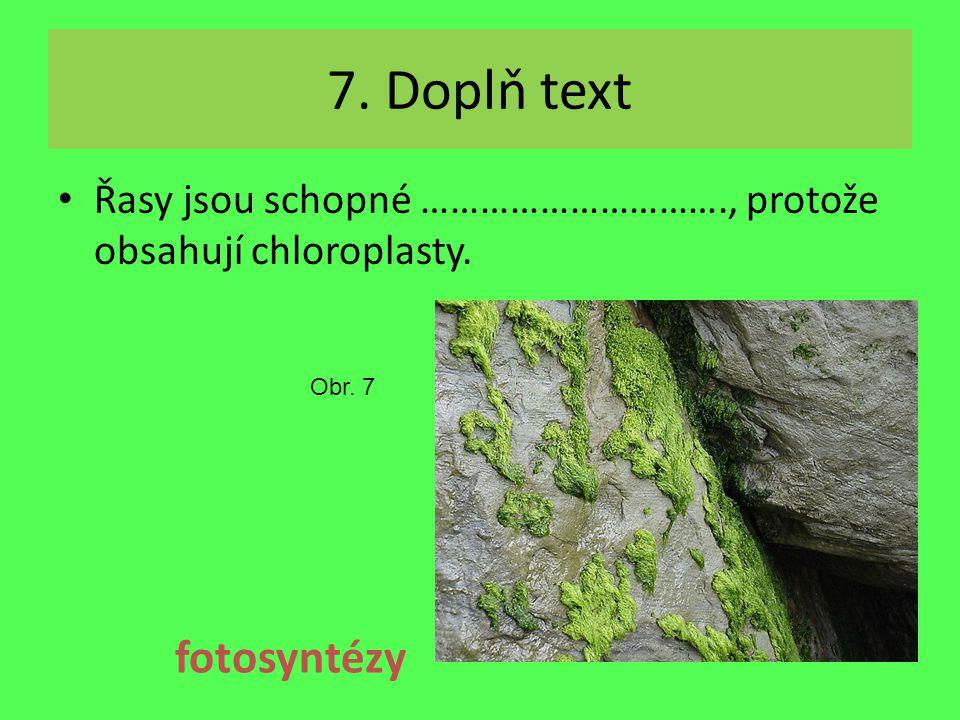 7. Doplň text Řasy jsou schopné …………………………., protože obsahují chloroplasty. fotosyntézy Obr. 7