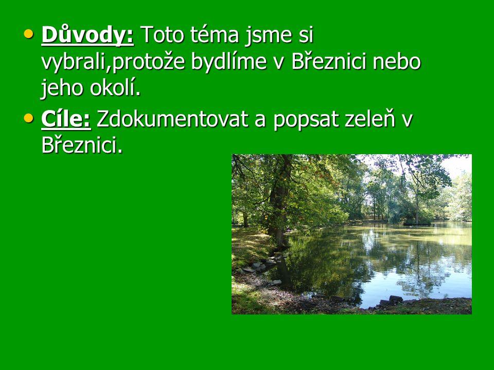 Realizace a způsob práce: Pozorovali jsme zeleň v Březnici a zakreslovali místa zeleně do mapy.