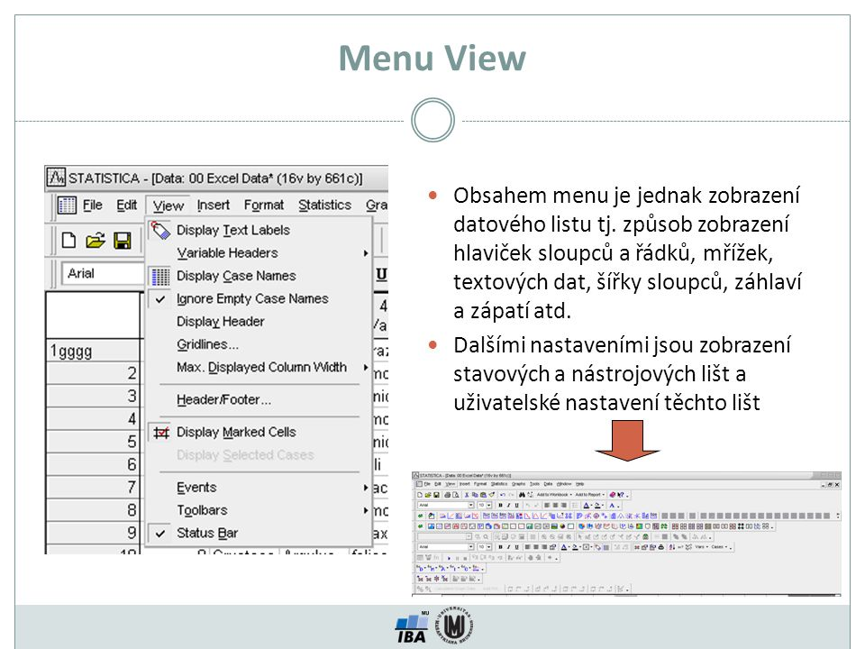 Menu View Obsahem menu je jednak zobrazení datového listu tj. způsob zobrazení hlaviček sloupců a řádků, mřížek, textových dat, šířky sloupců, záhlaví