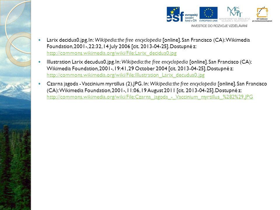 Larix decidua0.jpg.In: Wikipedia: the free encyclopedia [online].