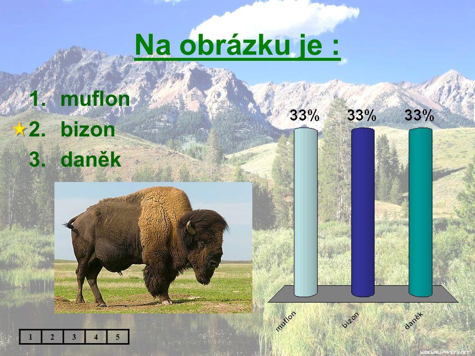 Na obrázku je : 1.muflon 2.bizon 3.daněk 12345