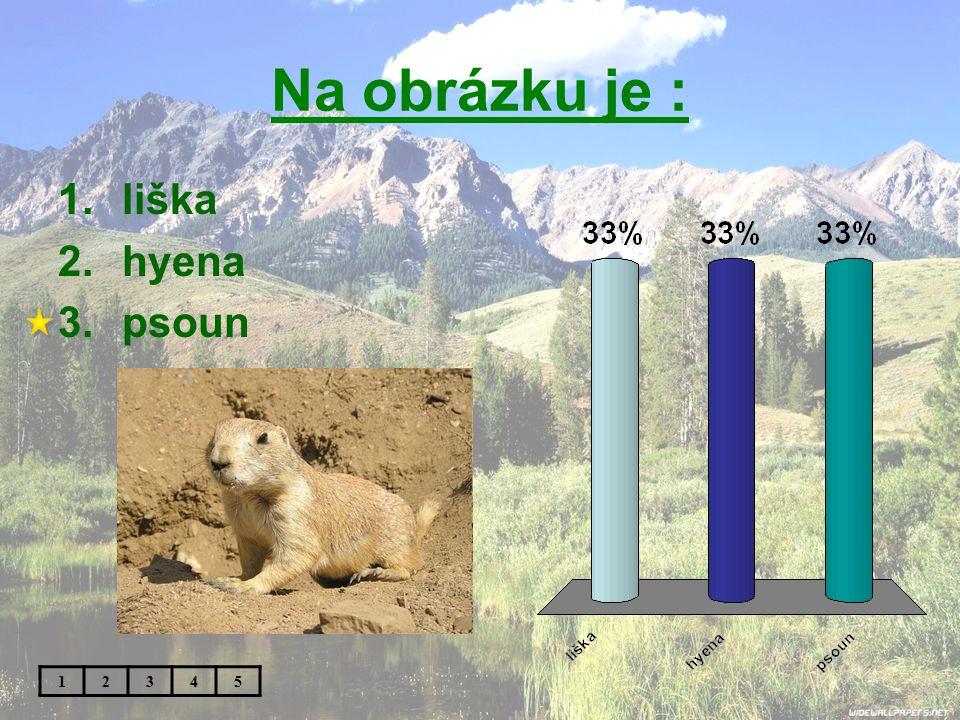 Na obrázku je : 1.liška 2.hyena 3.psoun 12345
