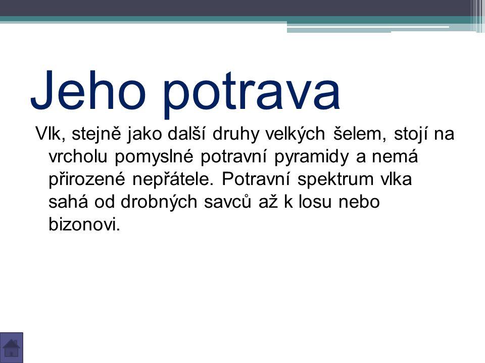 Zdroje www.wikipedie.org www.selmy.cz
