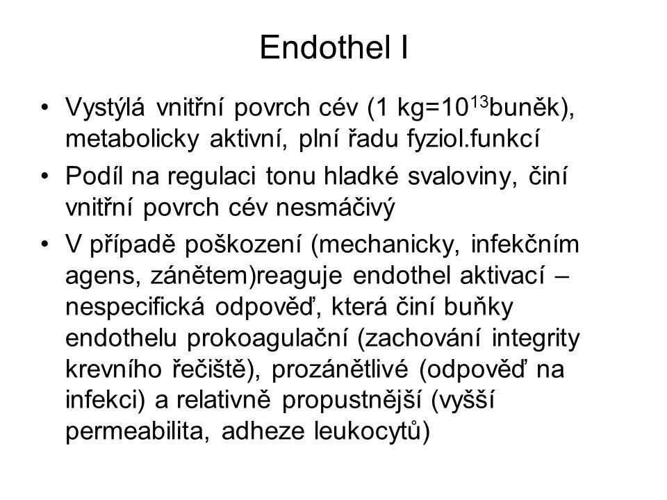 Endothel I Vystýlá vnitřní povrch cév (1 kg=10 13 buněk), metabolicky aktivní, plní řadu fyziol.funkcí Podíl na regulaci tonu hladké svaloviny, činí v