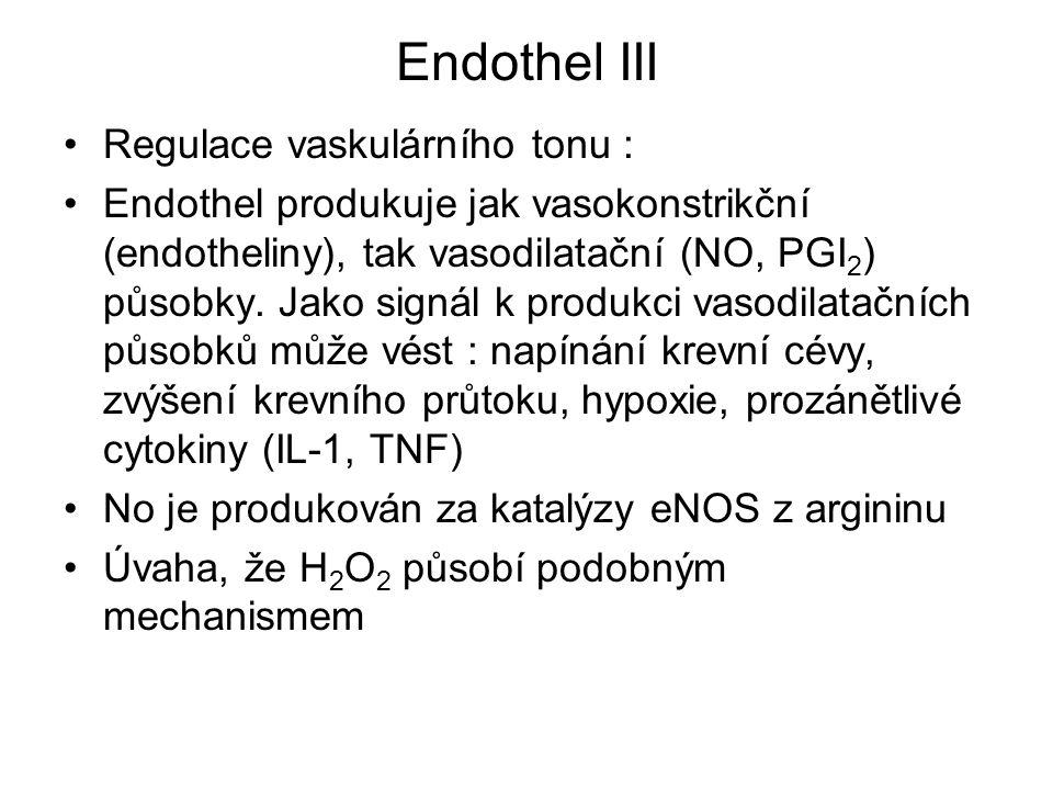 Endothel III Regulace vaskulárního tonu : Endothel produkuje jak vasokonstrikční (endotheliny), tak vasodilatační (NO, PGI 2 ) působky. Jako signál k