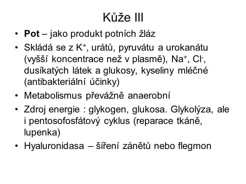 Kůže III Pot – jako produkt potních žláz Skládá se z K +, urátů, pyruvátu a urokanátu (vyšší koncentrace než v plasmě), Na +, Cl -, dusíkatých látek a