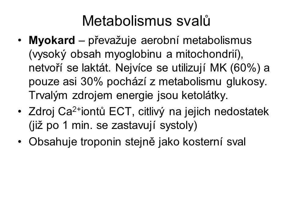 Metabolismus svalů Myokard – převažuje aerobní metabolismus (vysoký obsah myoglobinu a mitochondrií), netvoří se laktát. Nejvíce se utilizují MK (60%)