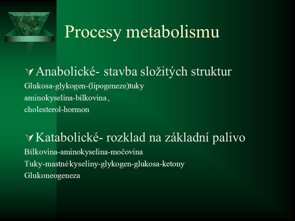 Procesy metabolismu  Anabolické- stavba složitých struktur Glukosa-glykogen-(lipogeneze)tuky aminokyselina-bílkovina, cholesterol-hormon  Katabolické- rozklad na základní palivo Bílkovina-aminokyselina-močovina Tuky-mastné kyseliny-glykogen-glukosa-ketony Glukoneogeneza