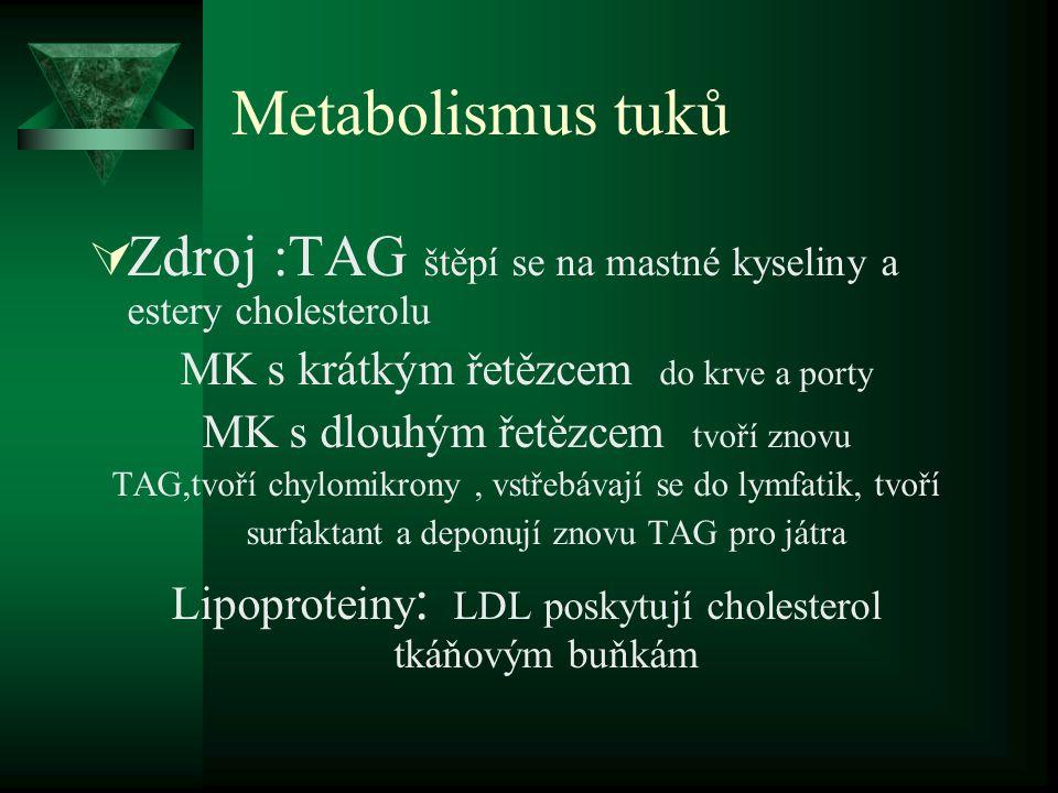 Metabolismus tuků  Zdroj :TAG štěpí se na mastné kyseliny a estery cholesterolu MK s krátkým řetězcem do krve a porty MK s dlouhým řetězcem tvoří znovu TAG,tvoří chylomikrony, vstřebávají se do lymfatik, tvoří surfaktant a deponují znovu TAG pro játra Lipoproteiny : LDL poskytují cholesterol tkáňovým buňkám