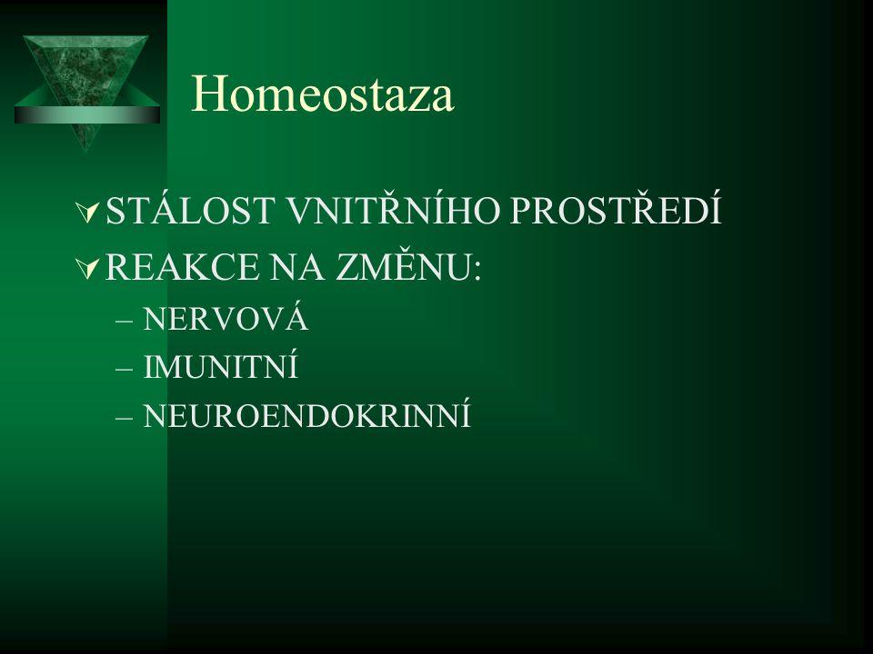 Nervová soustava- homeostaza  Čidla (receptory) kůže,svaly,cévy vnitřní orgány  Aferentní nervová vlákna  CNS  Motorická a vegetativní nervová vlákna efektorová (volní a mimovolní odpověď)