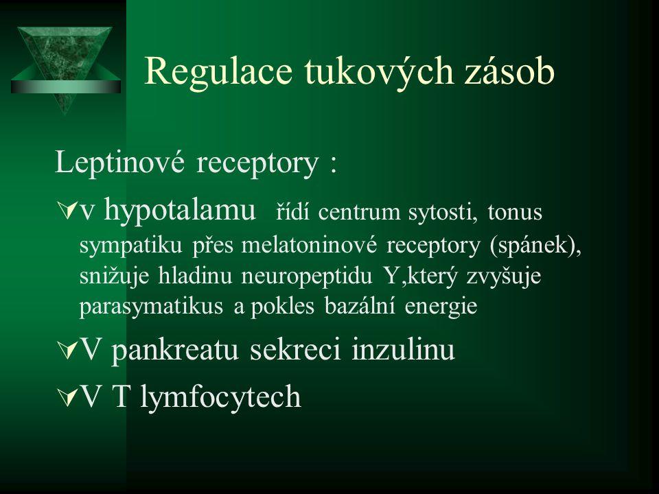 Regulace tukových zásob Leptinové receptory :  v hypotalamu řídí centrum sytosti, tonus sympatiku přes melatoninové receptory (spánek), snižuje hladinu neuropeptidu Y,který zvyšuje parasymatikus a pokles bazální energie  V pankreatu sekreci inzulinu  V T lymfocytech