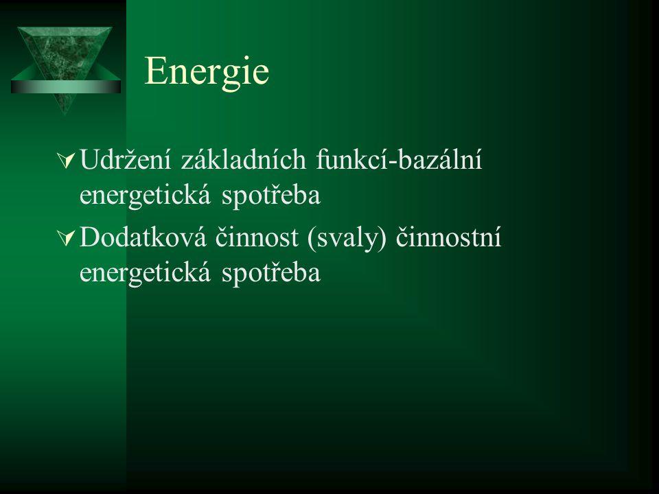Energie  Udržení základních funkcí-bazální energetická spotřeba  Dodatková činnost (svaly) činnostní energetická spotřeba