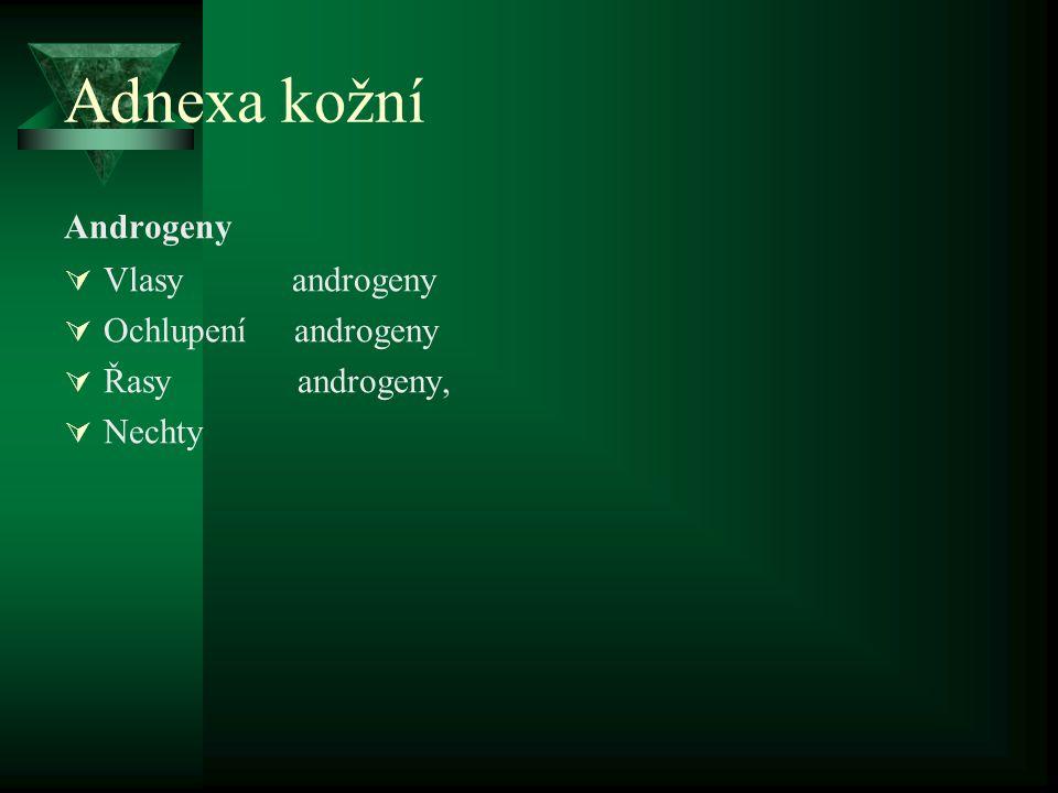 Adnexa kožní Androgeny  Vlasy androgeny  Ochlupení androgeny  Řasy androgeny,  Nechty