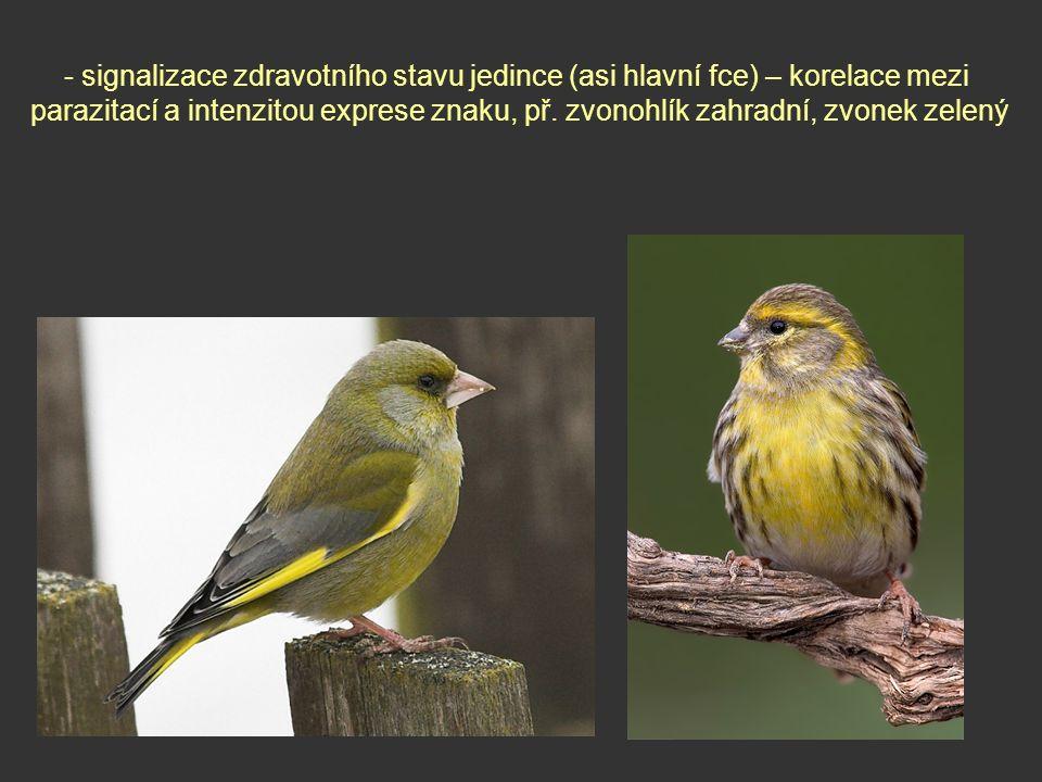 - signalizace zdravotního stavu jedince (asi hlavní fce) – korelace mezi parazitací a intenzitou exprese znaku, př. zvonohlík zahradní, zvonek zelený