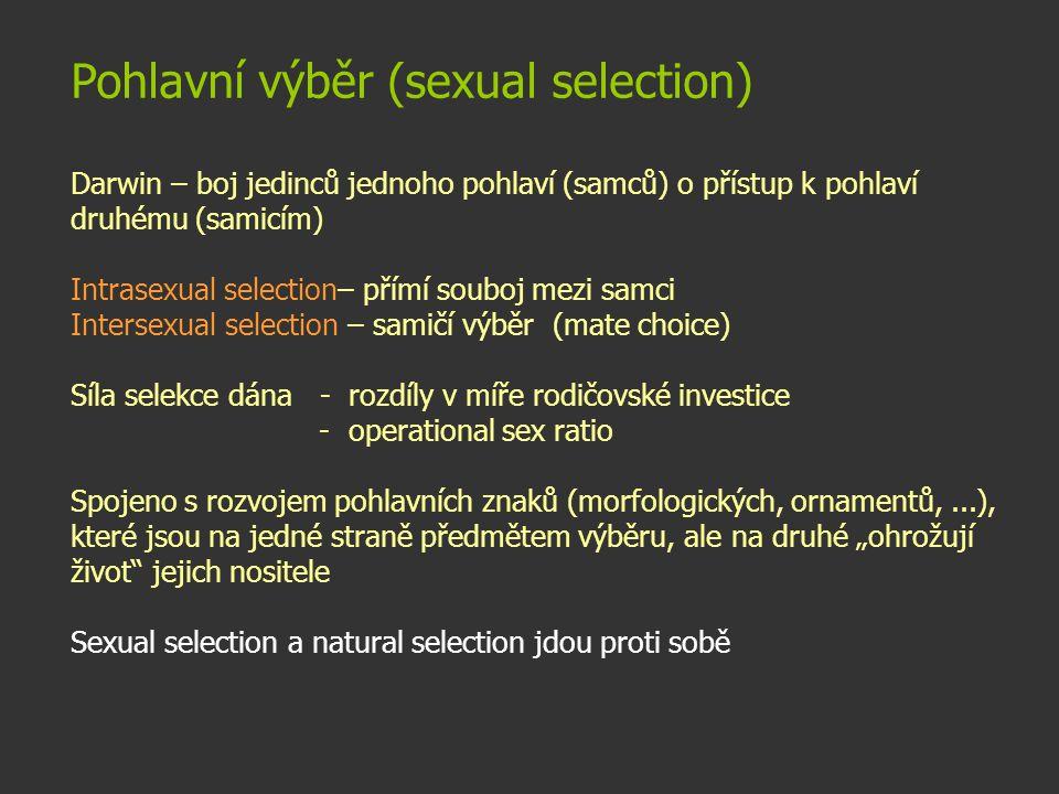 Pohlavní výběr (sexual selection) Darwin – boj jedinců jednoho pohlaví (samců) o přístup k pohlaví druhému (samicím) Intrasexual selection– přímí soub