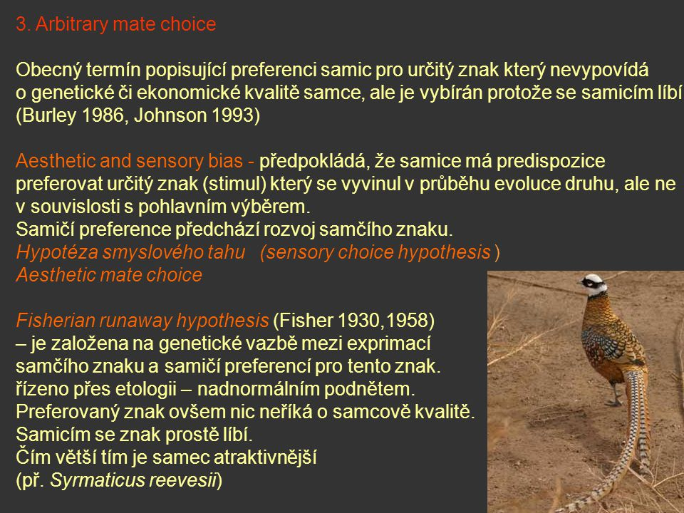 Teritorium Př.: vlhovec červenokřídlý - samice si primárně vybírají dle kvality teritoria pěvuška modrá rákosník seychelský Hnízdo Př.: rehek zahradní – předvádí vhodnou dutinu snovači r.