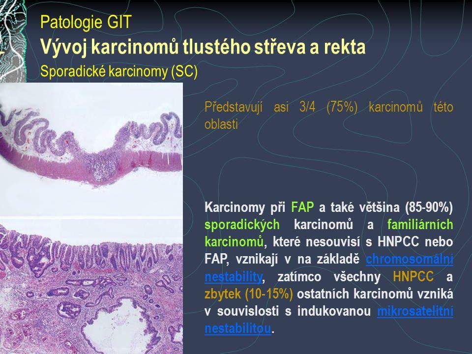 Vývoj karcinomů tlustého střeva a rekta Sporadické karcinomy (SC) Představují asi 3/4 (75%) karcinomů této oblasti Karcinomy při FAP a také většina (85-90%) sporadických karcinomů a familiárních karcinomů, které nesouvisí s HNPCC nebo FAP, vznikají v na základě chromosomální nestability, zatímco všechny HNPCC a zbytek (10-15%) ostatních karcinomů vzniká v souvislosti s indukovanou mikrosatelitní nestabilitou.