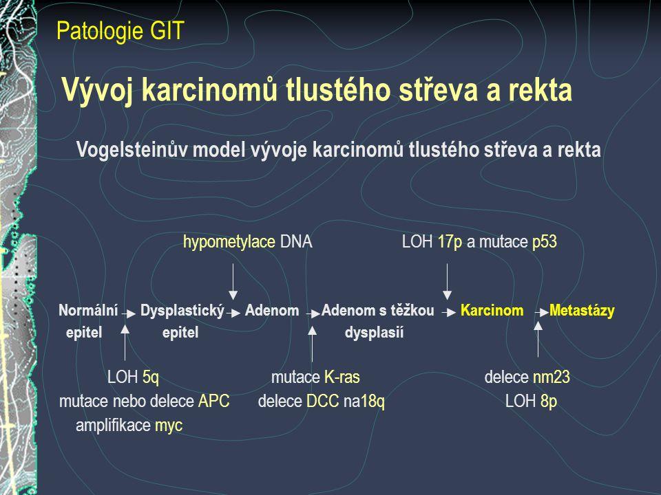 Vývoj karcinomů tlustého střeva a rekta Vogelsteinův model vývoje karcinomů tlustého střeva a rekta hypometylace DNA LOH 17p a mutace p53 Normální Dysplastický Adenom Adenom s těžkou Karcinom Metastázy epitel epitel dysplasií LOH 5q mutace K-ras delece nm23 mutace nebo delece APC delece DCC na18q LOH 8p amplifikace myc Patologie GIT