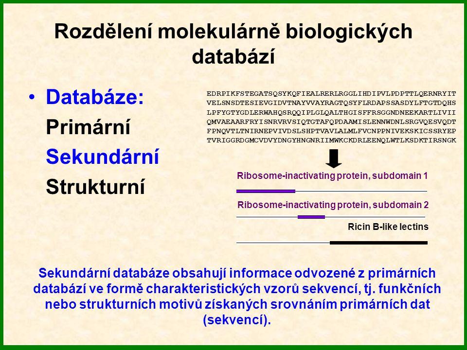Rozdělení molekulárně biologických databází Databáze: Primární Sekundární Strukturní Abrin Obsahují struktury proteinů (nukleových kyselin) a jejich anotace.