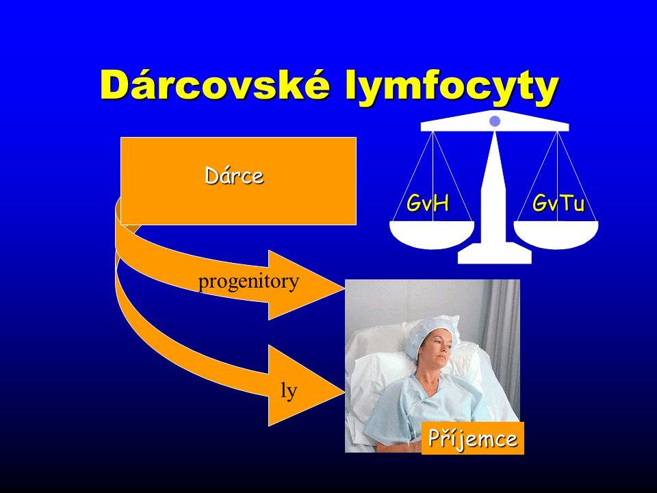 ly Dárcovské lymfocyty Dárce progenitory Příjemce GvHGvTu