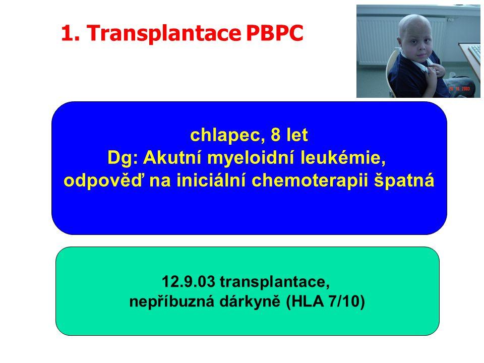 12.9.03 transplantace, nepříbuzná dárkyně (HLA 7/10) chlapec, 8 let Dg: Akutní myeloidní leukémie, odpověď na iniciální chemoterapii špatná 1.