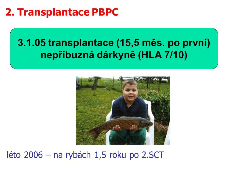 3.1.05 transplantace (15,5 měs.
