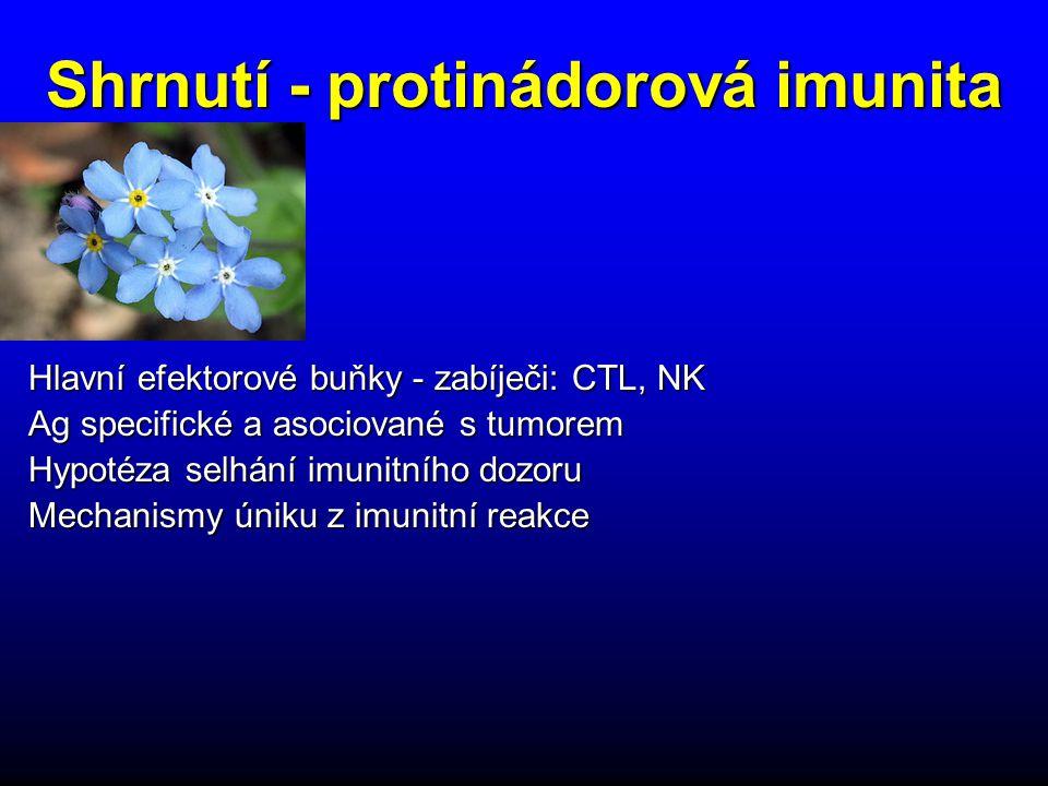 Hlavní efektorové buňky - zabíječi: CTL, NK Ag specifické a asociované s tumorem Hypotéza selhání imunitního dozoru Mechanismy úniku z imunitní reakce Shrnutí - protinádorová imunita