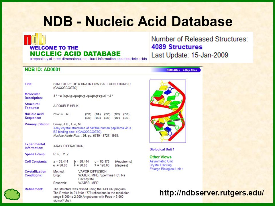 NDB - Nucleic Acid Database http://ndbserver.rutgers.edu/