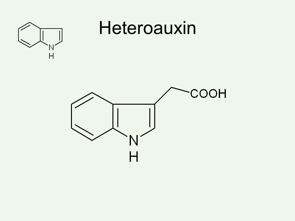 Heteroauxin