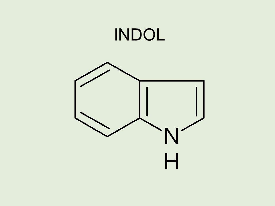 INDOL