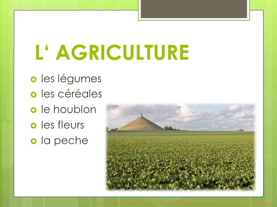 L' AGRICULTURE  les légumes  les céréales  le houblon  les fleurs  la peche http://commons.wikimedia.org/wiki/File:Belgique_Butte_du_Lion_dit_de_Waterloo.jpg