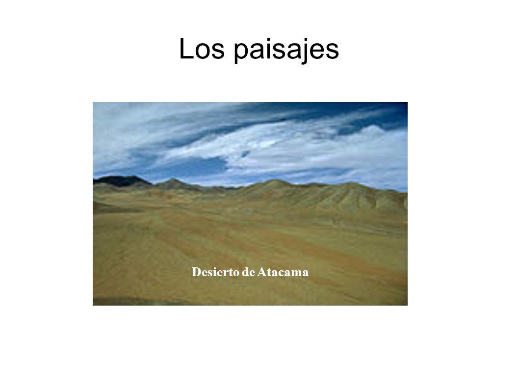 Los paisajes Desierto de Atacama