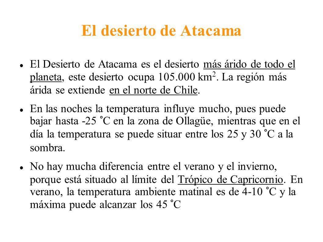 El desierto de Atacama El Desierto de Atacama es el desierto más árido de todo el planeta, este desierto ocupa 105.000 km 2. La región más árida se ex