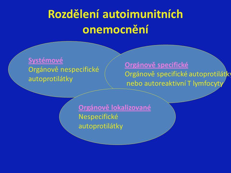 Rozdělení autoimunitních onemocnění Systémové Orgánově nespecifické autoprotilátky Orgánově specifické Orgánově specifické autoprotilátky nebo autorea