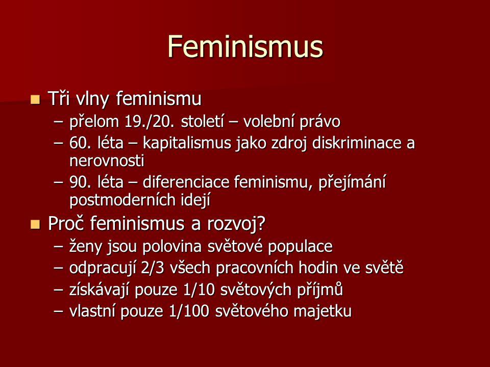 Feminismus Tři vlny feminismu Tři vlny feminismu –přelom 19./20. století – volební právo –60. léta – kapitalismus jako zdroj diskriminace a nerovnosti