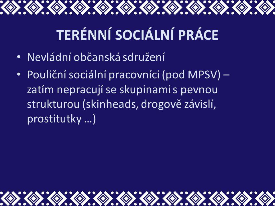 TERÉNNÍ SOCIÁLNÍ PRÁCE Nevládní občanská sdružení Pouliční sociální pracovníci (pod MPSV) – zatím nepracují se skupinami s pevnou strukturou (skinhead