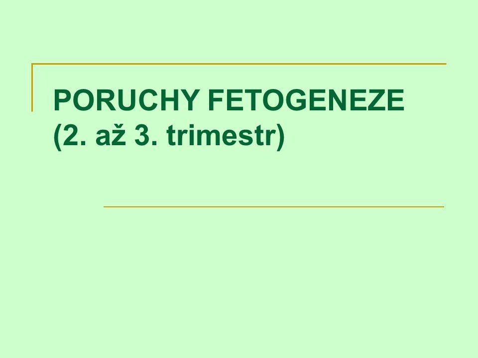 PORUCHY FETOGENEZE (2. až 3. trimestr)