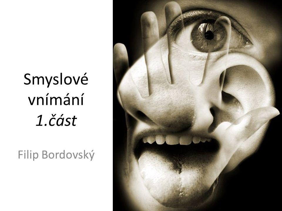 Smyslové vnímání 1.část Filip Bordovský