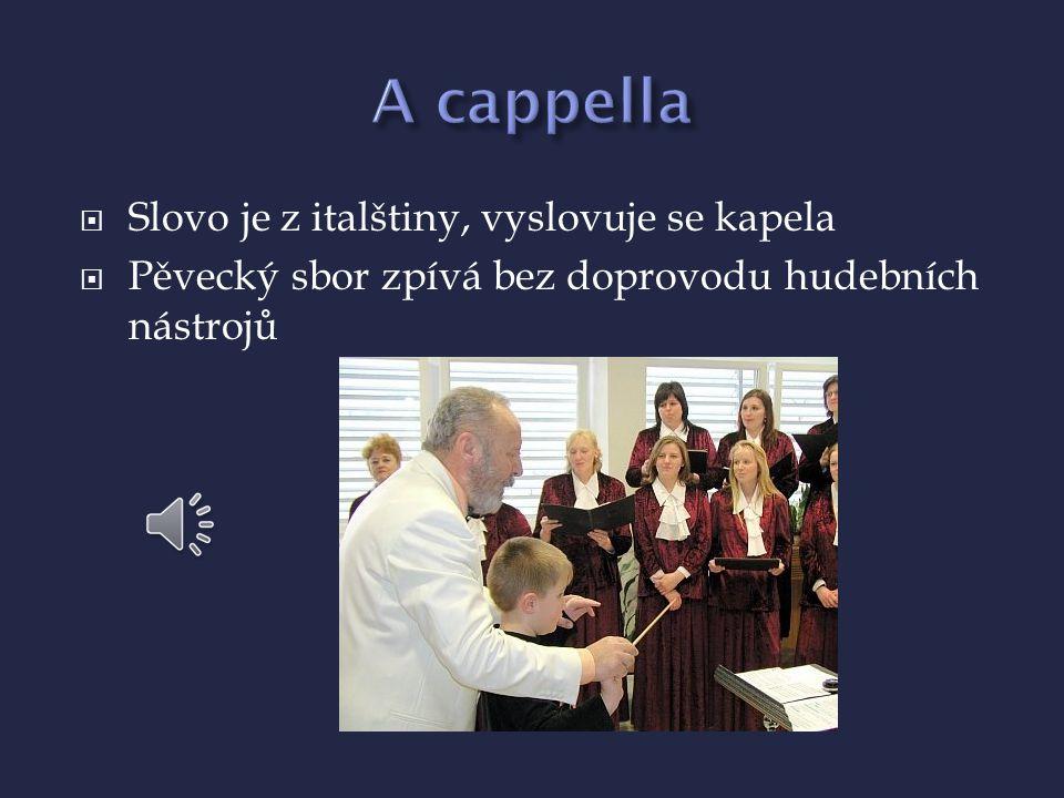  Slovo je z italštiny, vyslovuje se kapela  Pěvecký sbor zpívá bez doprovodu hudebních nástrojů