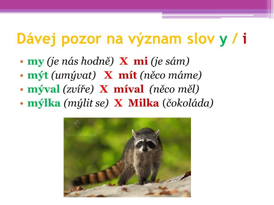 Dávej pozor na význam slov y / i my (je nás hodně) X mi (je sám) mýt (umývat) X mít (něco máme) mýval (zvíře) X míval (něco měl) mýlka (mýlit se) X Mi