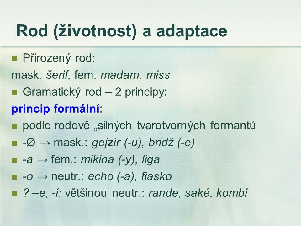 princip sémantický na základě sémantických, často synonymických relací s domácí slovní zásobou (sémantická analogie): avenue – fem.