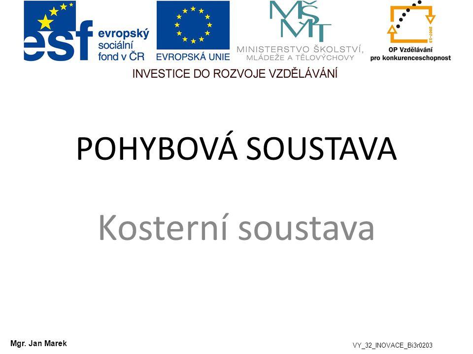 POHYBOVÁ SOUSTAVA Kosterní soustava VY_32_INOVACE_Bi3r0203 Mgr. Jan Marek